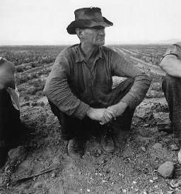 Dorothea Lange, Jobless on Edge of Pea Field