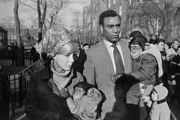 Winogrand, Central Park Zoo